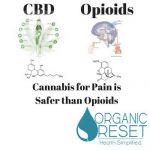 cbd opiods